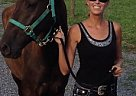 - Gelding in Howard, PA