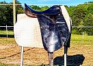 Fantastic Cheap Dressage Saddle